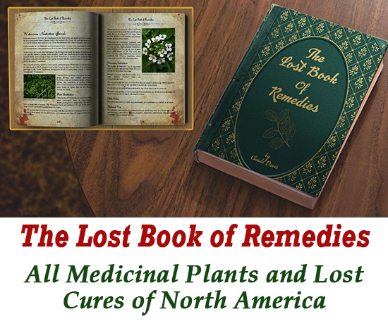 The Lost Book of Remedies scams