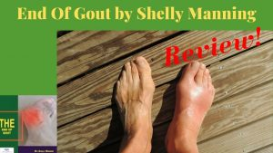 End of Gout Guide