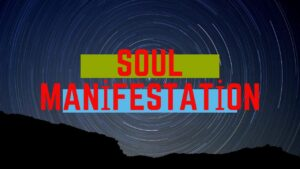 Soul Manifestation 2.0 Reviews